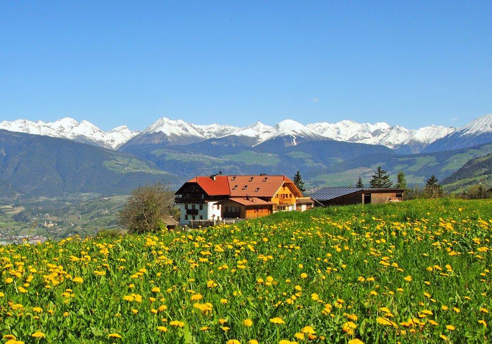 Vacanze in fattoria a bressanone agriturismo in alto for Bressanone vacanze