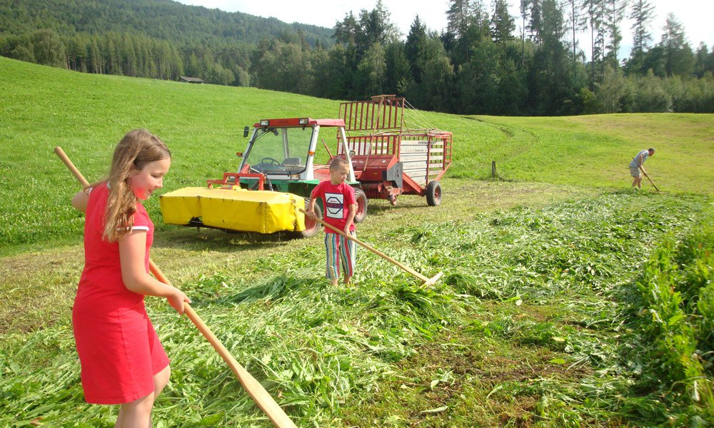 Schnagererhof: exciting farm holidays for children
