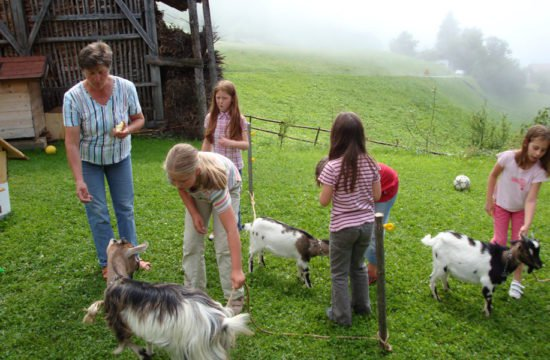 Children holiday Schnagererhof (4)