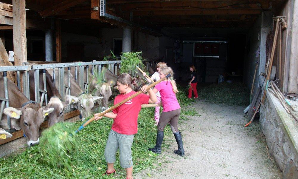 Tierfreunde